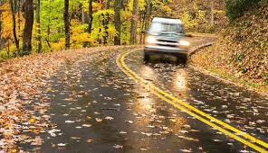 fall-driving-picture